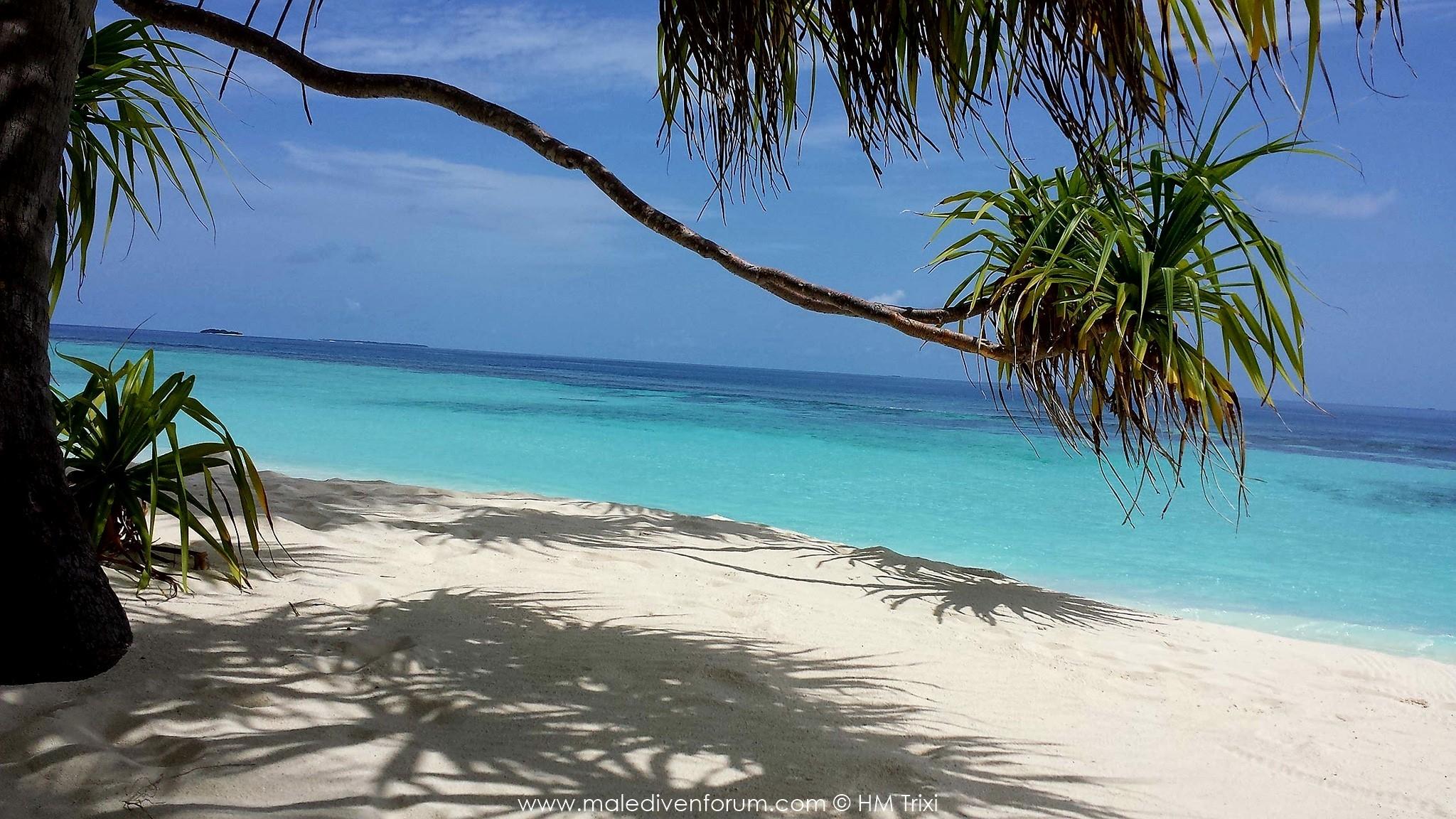 Reisebericht Angaga Island ResortStrand