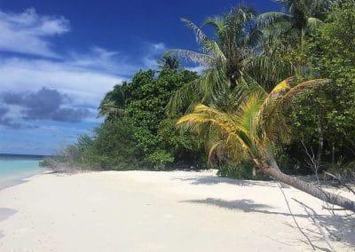 Reisebericht Embudu Village