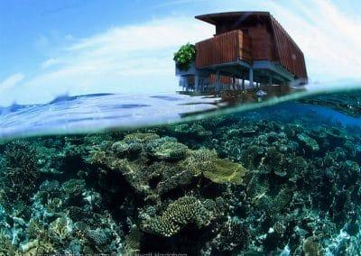 Park Hyatt Maldives Hadahaa Reef