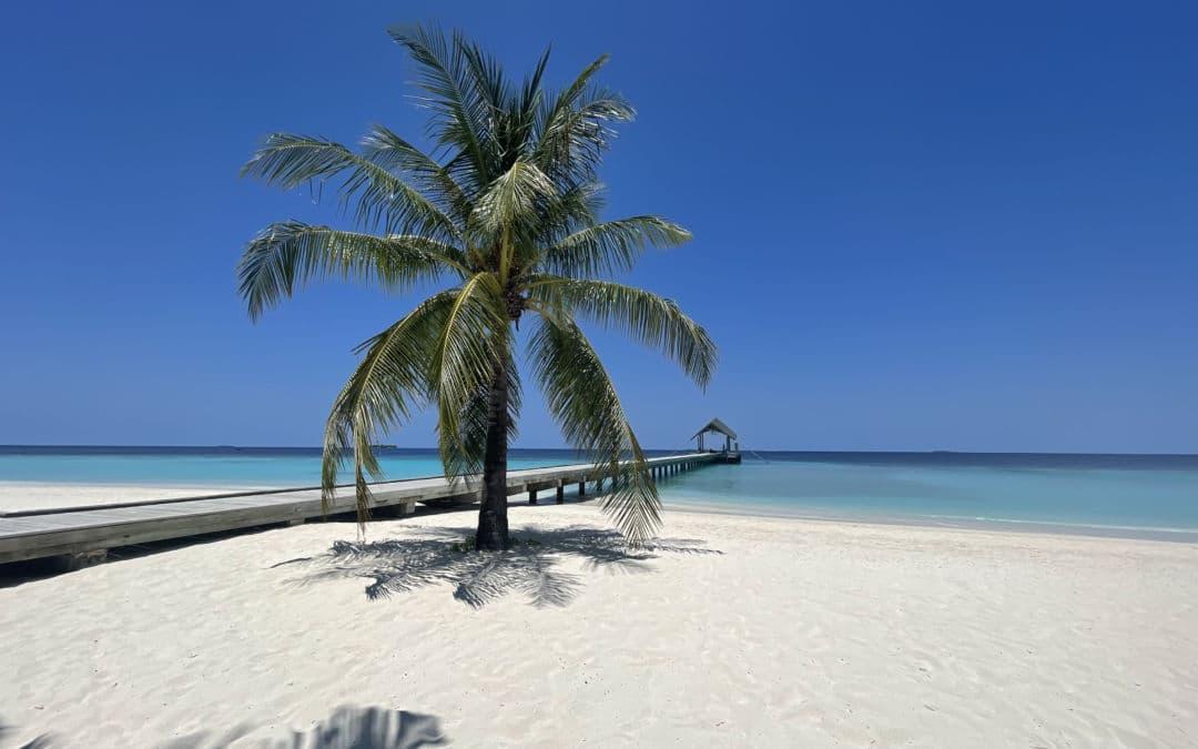 Reisebericht Amari Havodda Maldives